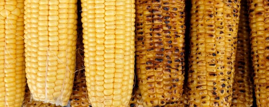 ¿Sabías que las palomitas de maíz se inventaron en la América Precolombina?