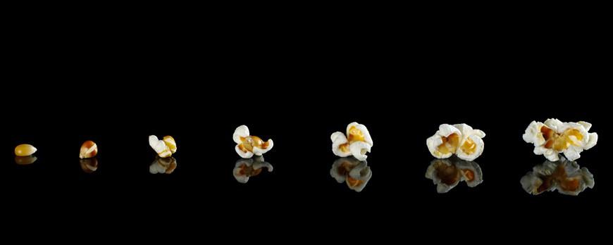 ¿Por qué explotan las palomitas de maíz?